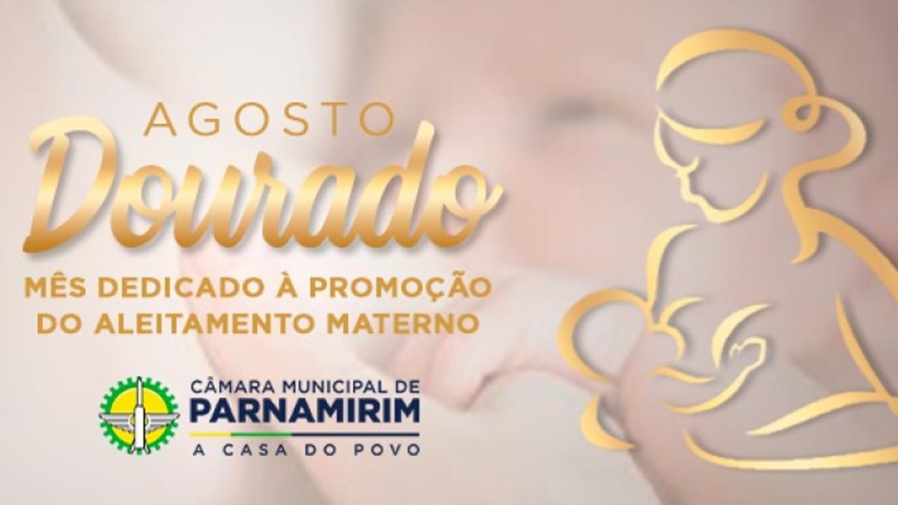 Agosto Dourado: conscientização e incentivo ao aleitamento materno