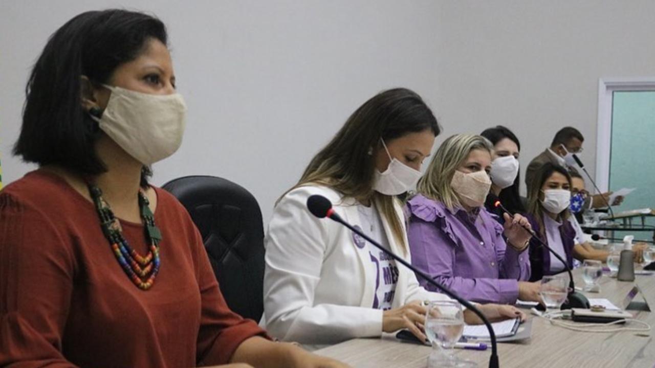 Mesa-redonda debate os direitos das mulheres e o enfrentamento à violência doméstica na Câmara Municipal