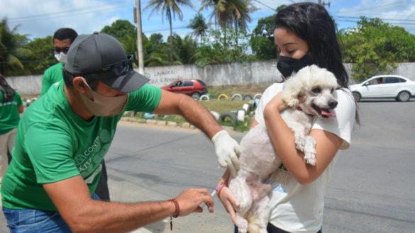 Antirrábica: Prefeitura registra cerca de 3.400 animais imunizados